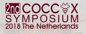 2nd International Coccyx Pain Symposium, Netherlands, 2018,