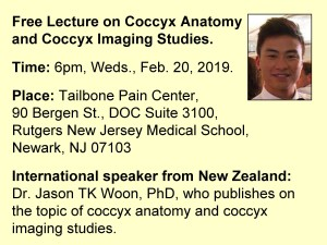 Free Lecture on Coccyx Anatomy, Jason TK Woon, PhD