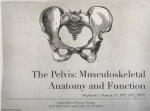 Stephanie Stamas PT, Title Slide from her Pelvic Pain lecture, 3-19-18